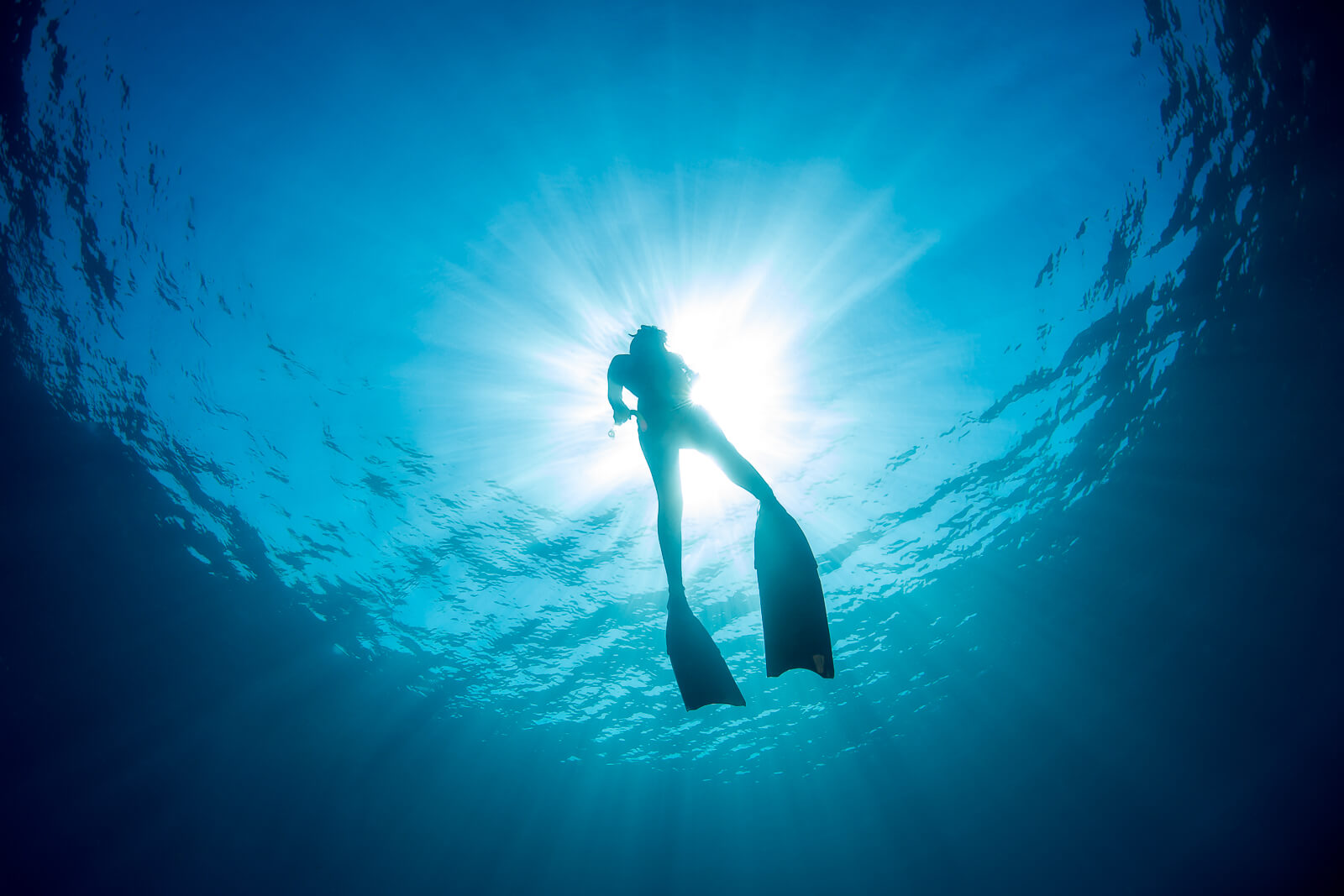 Picture of freediving in Bali
