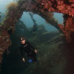 Picture of freediving the liberty wreck Bali