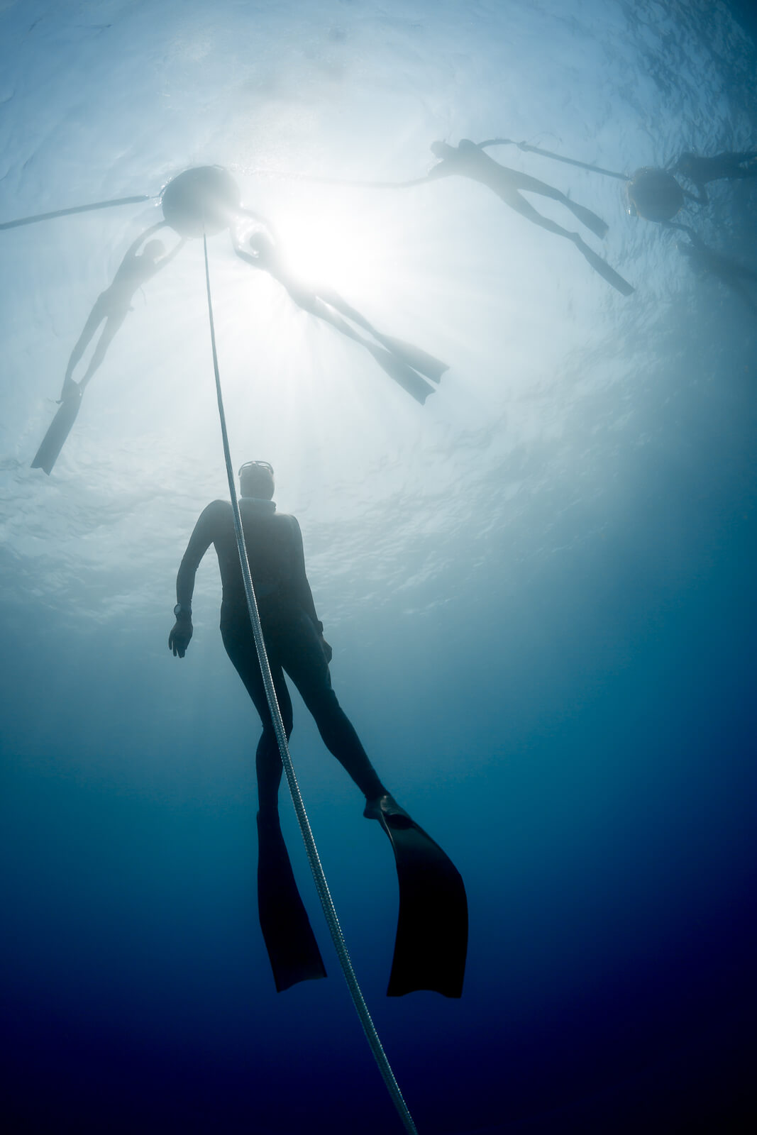 Picture 4 of Level 1 basic freediving course