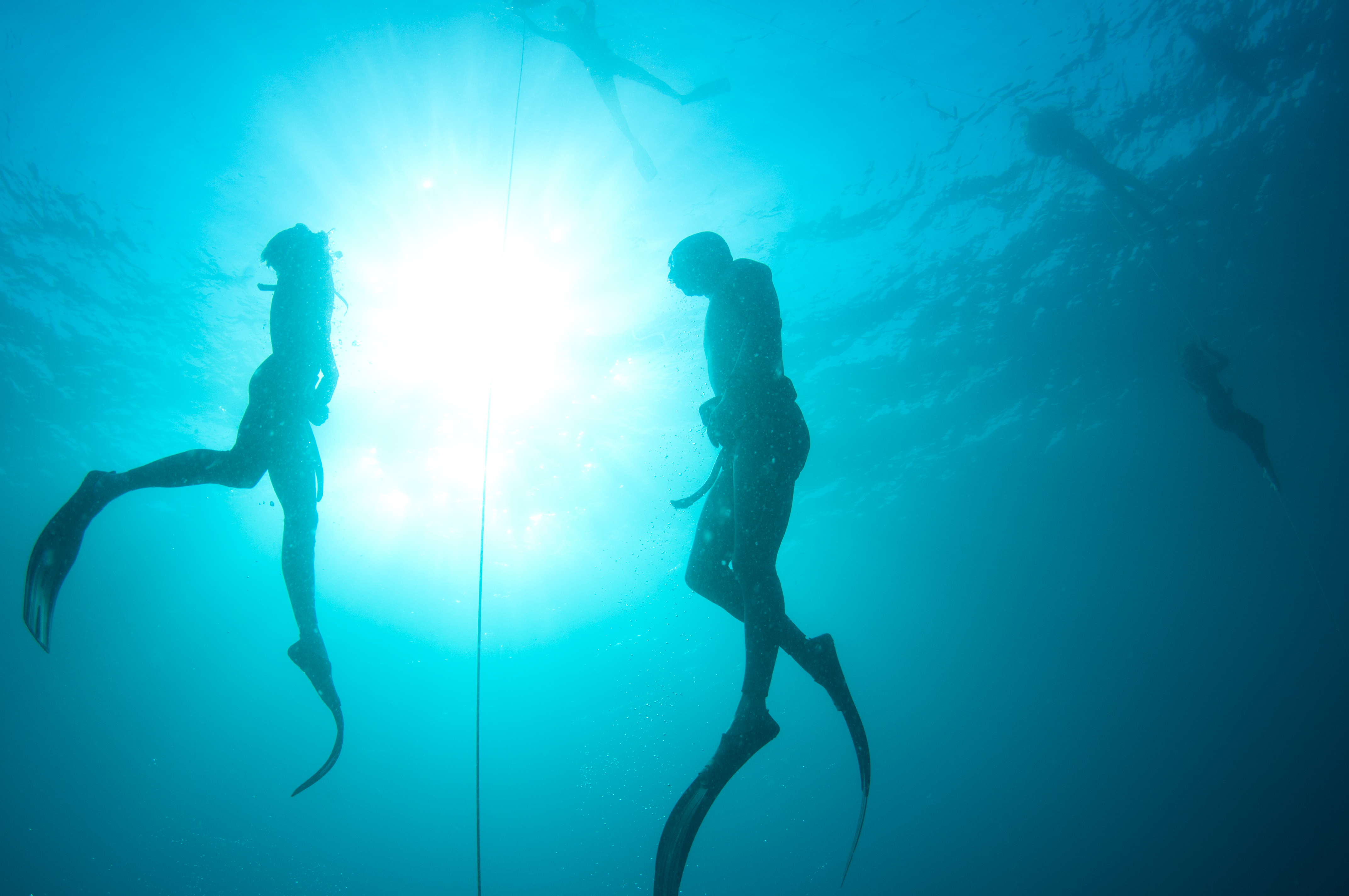 Best Place To Learn Freediving In Bali