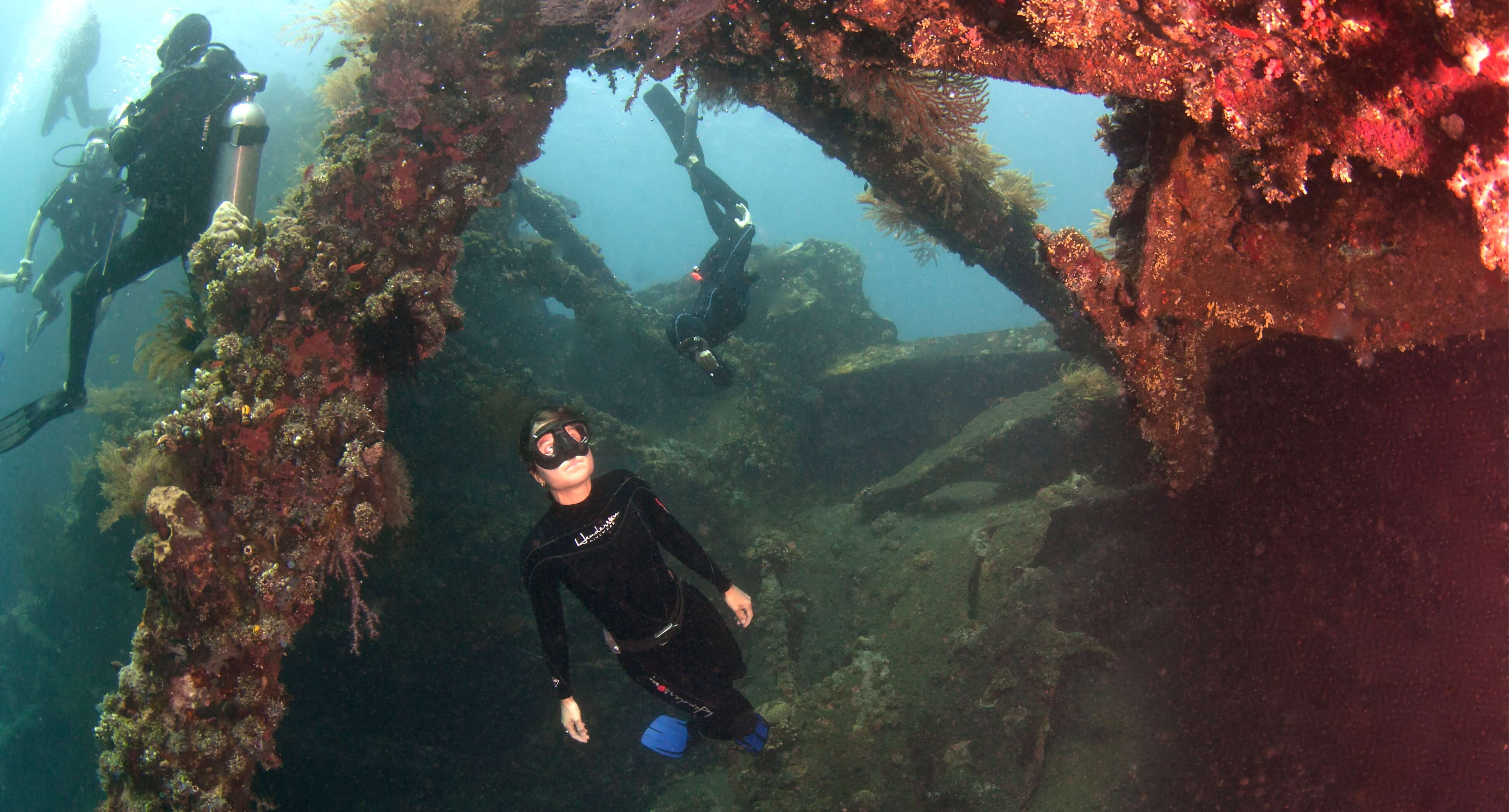 Picture of Freediving in Liberty Wreck