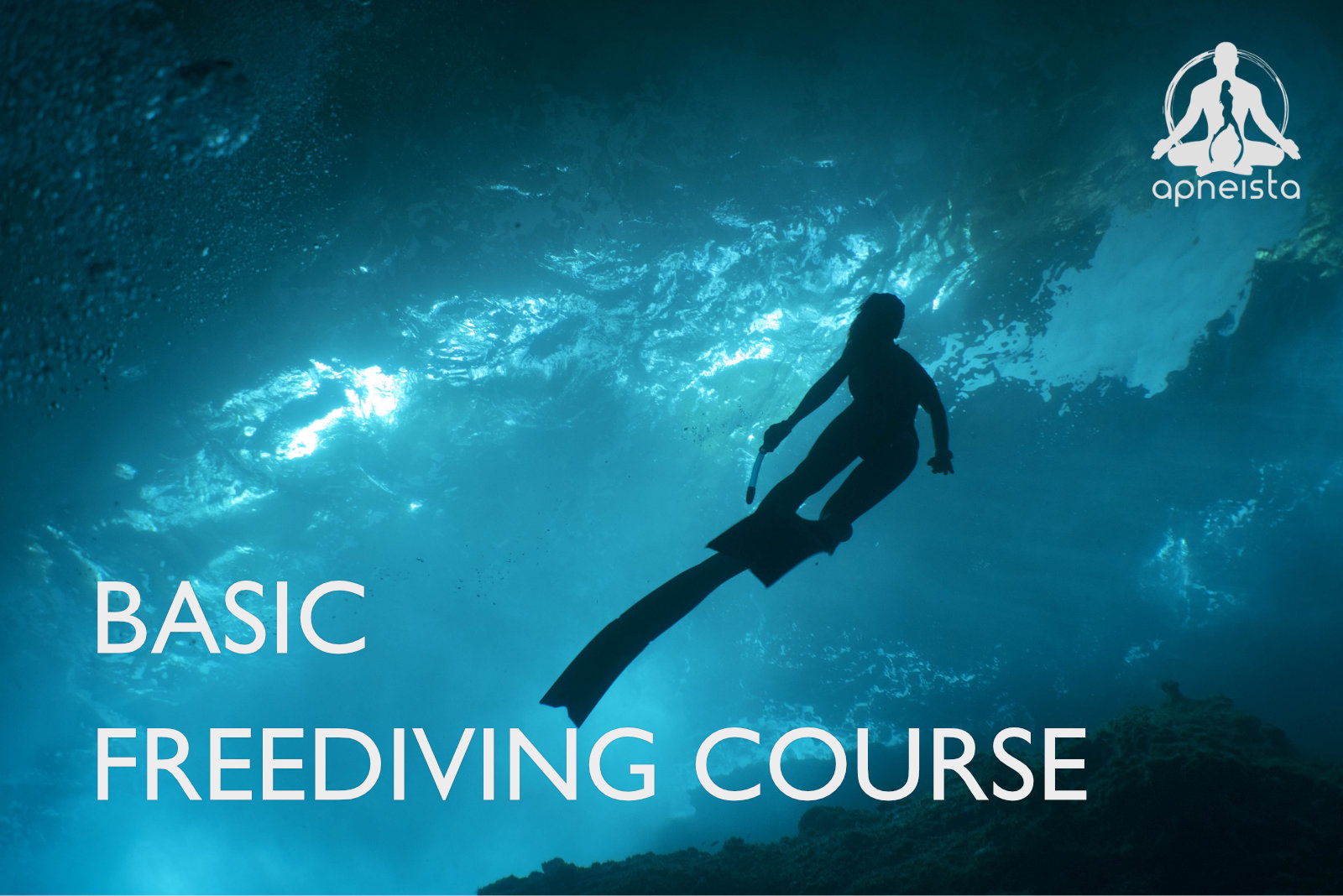 Picture of basic freediving course
