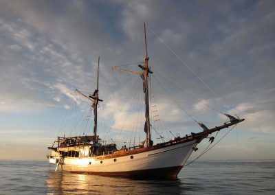 Picture of Liveaboard Jiwa Boat