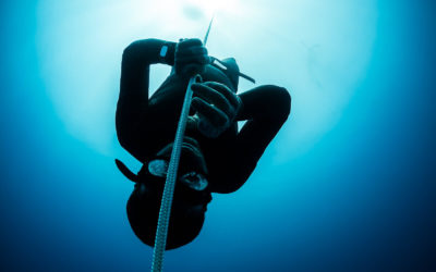 Freediving disciplines and current freediving records