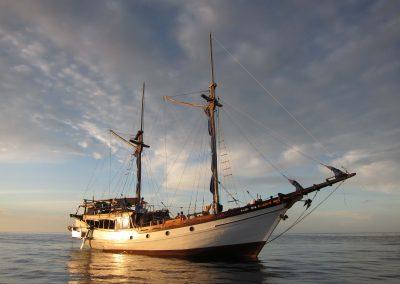 Picture of Liveaboard Jiwa Boat